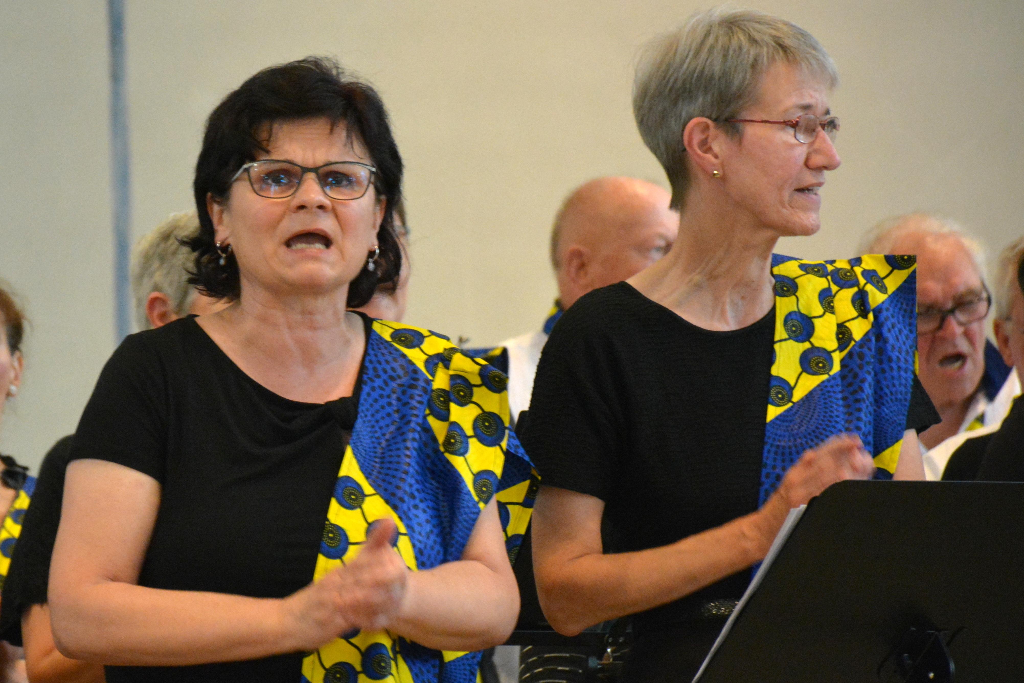 Afrikanische Messe Au am Rhein 2019-07-20 025